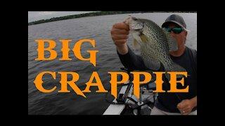 Crappie Fishing Fun