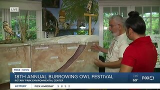 New exhibit comes to 18th annual Burrowing Owl Festival