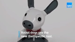 Robot therapy dogs!