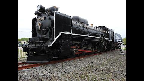 D51-333 on display