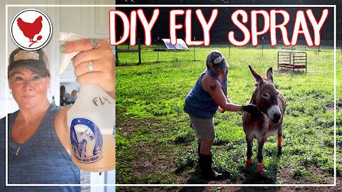 DIY FLY SPRAY | Keep the Flies off Your Animals!