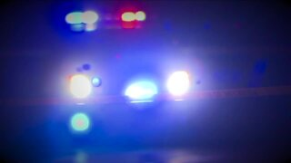 New training helping police handle domestic violence situations