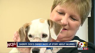 Injured Butler County dog 'just all love' in her new foster home