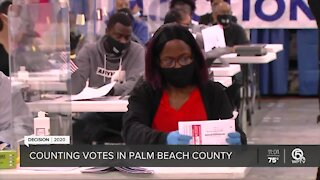 'Great' Election Day in Palm Beach County with no major equipment or harassment issues, officials say
