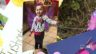 Calls for action after toddler's death