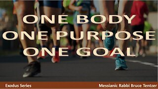 One Body One Purpose One Goal