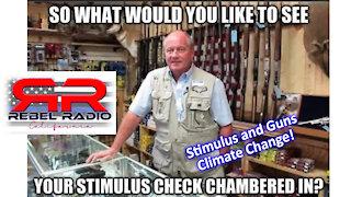 Stimulus Money for GUNS!!!