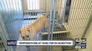 MCACC dealing with cooling issues at West animal shelter