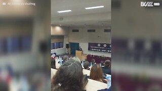 Gato curioso invade palestra cheia de alunos