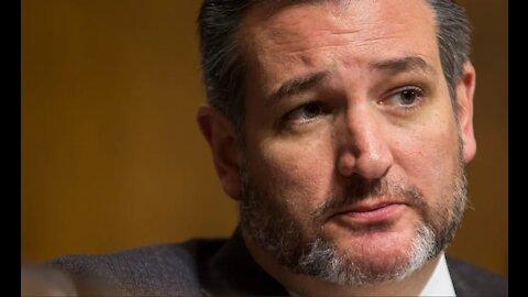 Senator Ted Cruz Grills Democrats Who Claim Voter ID Laws Are Racist