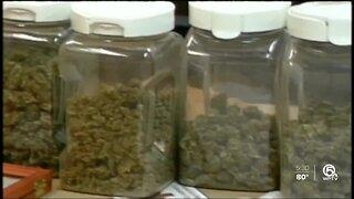 Proposed medical marijuana change in Boca Raton