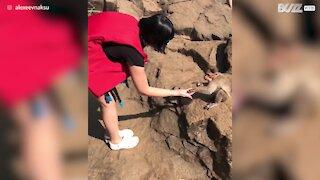 Cheeky monkey tries to nab food off tourist