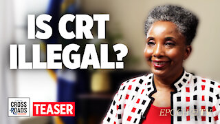 Teaser: Critical Race Theory May Violate Civil Rights Act—Interview with Dr Carol Swain