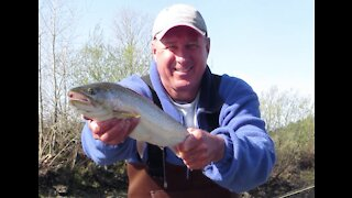 Steelhead Trout fishing