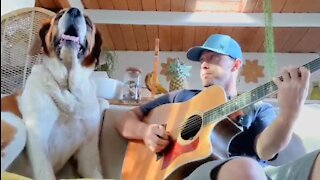 Musician plays a song for his dog