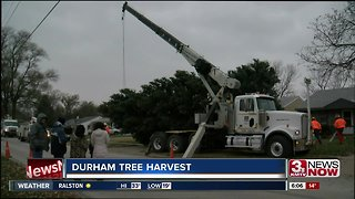 Durham Christmas Tree holds special meaning
