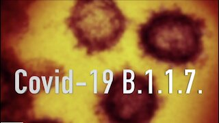 What's next after new COVID-19 variant discovered in Michigan?