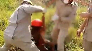 criança resgatada de cisterna, Brasil,