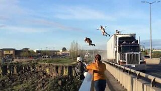 Daredevil friends BASE jump from moving truck