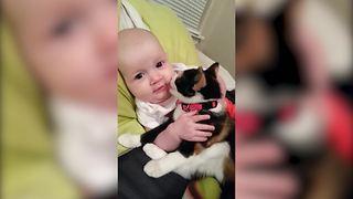 Cat Licks Baby