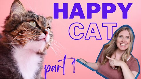 How To Raise A Happy Healthy Cat | Happy Cat Month September 2021 | Part 1