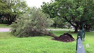 Storm damage in Palm Beach Gardens on Sunday