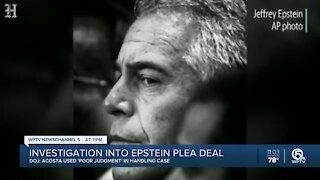Investigation into Epstein plea deal