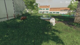 Oh, Sheep! ~ FS19 Campaign of France Episode 5