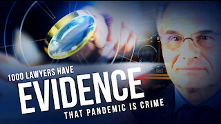 Dr. Reiner Fuellmich - 1000 lawyers have evidence that pandemic is crime against humanity