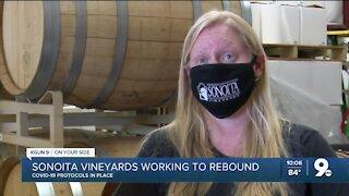 Sonoita Vineyard works to rebound from pandemic