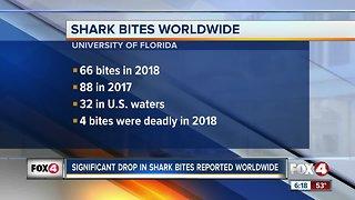 Decline in shark bites worldwide