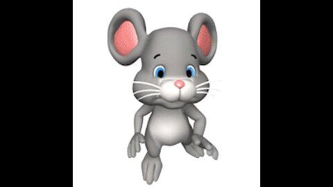 Les videos de DuSaurin & Associés: serie Les rongeurs 2/3: les souris