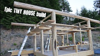 Tiny house off grid cabin structure goes up!