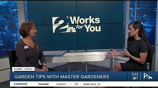 Gardening Tips with Tulsa Master Gardeners with Spring around the Corner