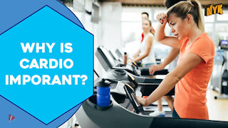 How Cardio Helps Your Body ?