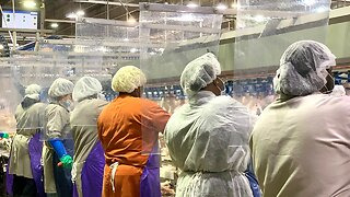 Meat, Poultry Plants Close As Workers Get Sick With COVID-19