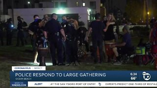 Police called to Ocean Beach over large gathering