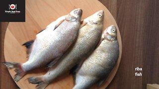 Fish - sardines