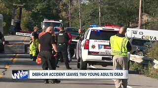 Double fatal accident prompts warnings about deer