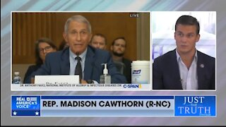 Rep Cawthorn: We Want To Prosecute Fauci If GOP Takes Control Of House Of Rep