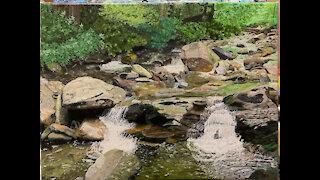 Painting Progress Stills: Great Smoky Mountain Waterfall