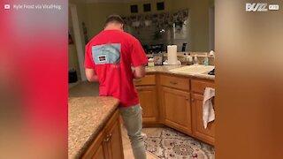 Antique plate destroys dishwasher