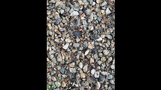 Recording rocks part 4