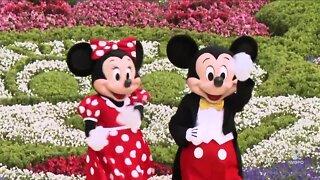 DWYM: Disney Reopening