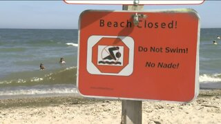 High bacteria in Lake Michigan closes Shorewood beach, has officials urging caution in Milwaukee