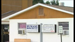 Volunteer dies after incident at Humane Society of St. Lucie County