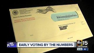 Arizona company digging into early ballot data