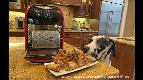 Foodie Great Danes Love Air Fryer Chicken Wings By RW Flame