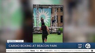 Family Fun Day at Beacon Park