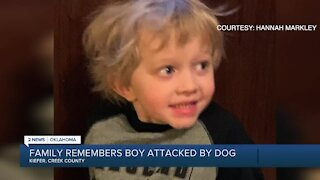 Family Remembers Boy Attacked By Dog